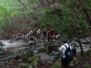 渓流沿いを歩く参加者の皆さん