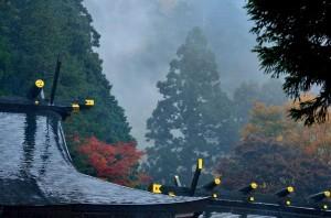 阿夫利神社は雨で煙っていました