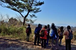 果樹園の展望台から富士山がきれい