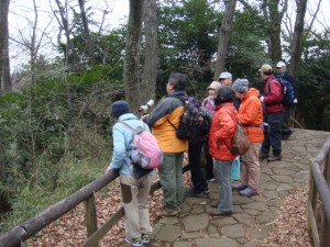 生田緑地で野鳥観察
