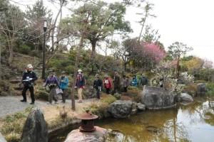 紅白のウメを楽しみ旧吉田邸の庭園を散策