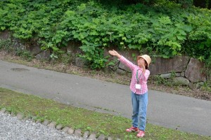 竹とんぼは大人気