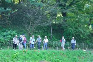 20150920-04ヒガンバナの咲く道を歩く