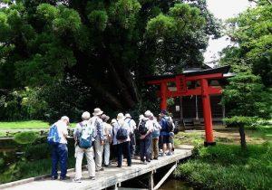 厳島湿生公園厳島神社