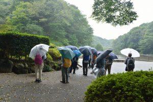 午前中も時折雨がふっていました。