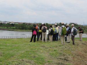 多摩川と宿河原堰堤